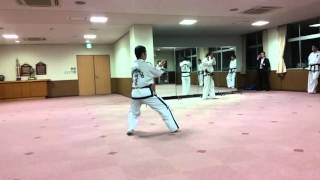ITF Taekwon-Do Pattern 을지틀(乙支)/ウルチ・トゥル/Ul-Ji Tul by Sabum Seiji Toyonaga from ITF-JAPAN20160416