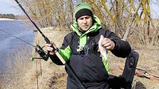 Где ловить Весной на Фидер? Ловите там, где есть Рыба!