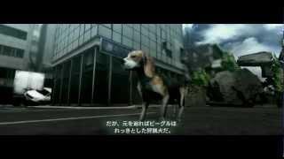 PS3ゲーム TOKYO JUNGLE(トーキョージャングル)のストーリーモードで...