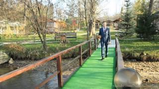 видео организация свадьбы в Харькове