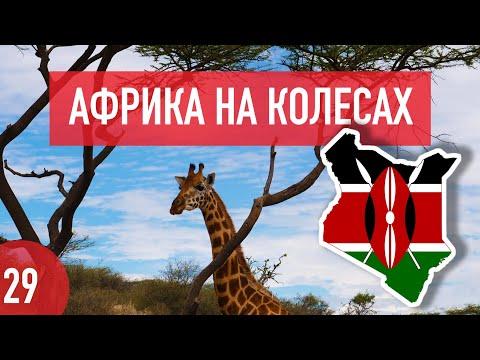 Кения. Кормежка крокодилов с рук, земляки и немного о работе. Африка на колесах #29