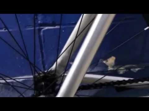 Aventon bikes,Aventon, Fixie,Fixed Gear, Mr bike shop, track frame,Aventon Mataro