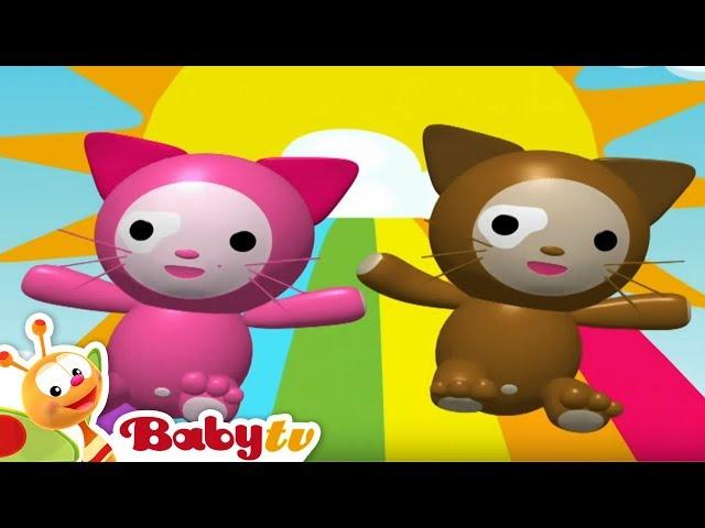 Head and Shoulders | Nursery Rhymes | BabyTV