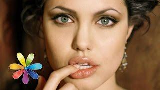 Диетическая панакота от Анджелины Джоли - Все буде добре - Выпуск 433 - 28.07.2014