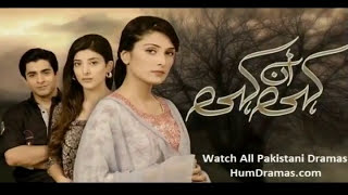 Top 10 Pakistani Drama Serials 2014 [Awarded] |Rosy Skkye