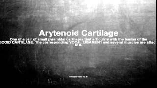 Medical vocabulary: What does Arytenoid Cartilage mean