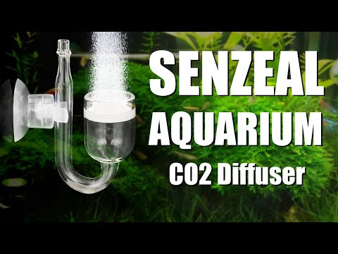 The Best In Tank CO2 Diffuser for Planted Tank- from senzeal.com