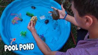 My Mini Backyard TURTLE PLAYGROUND!!!