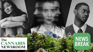 Anecdotal Evidence of Cannabis Aiding With PTSD Confirmed