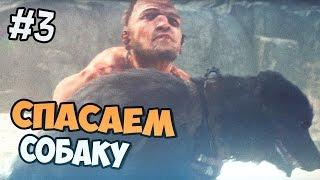 Mad Max прохождение на русском - Спасение собаки - Часть 3