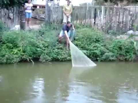Рыбалка кастинговой сетью ( закидушкой). Необычная ловля рыбы ...