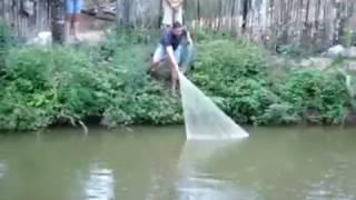 Рыбалка кастинговой сетью ( закидушкой). Необычная ловля рыбы.Кастинговая сеть fishing with nets