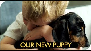 OUR NEW PUPPY | THE MICHALAKS