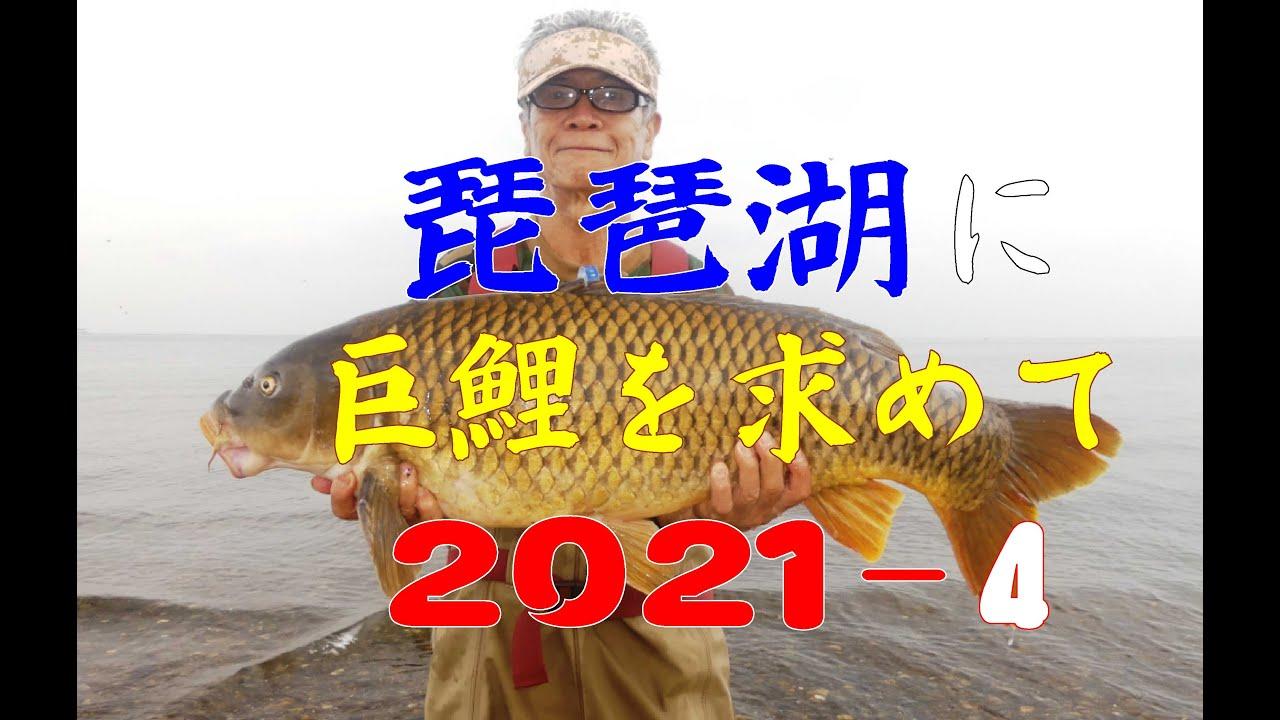 琵琶湖に巨鯉を求めて2021-4 梅雨明け前後の姉川