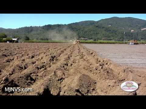 Vineyard Site Prep for Planting: Stage One
