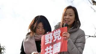 吉良よし子参院議員スピーチ 吉良佳子 検索動画 11