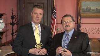 Sen. Proos promotes Bridgman American Legion Vietnam Veteran Pinning Ceremony