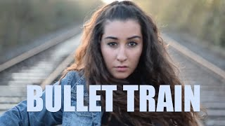 Bullet Train - Stephen Swartz (MUSIC VIDEO)