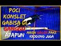 Pancingan Kacer Poci Gacor Konslet Ga Bisa Diam Udah Pakai Kerodong Juga Cocok Buat Pancingan  Mp3 - Mp4 Download