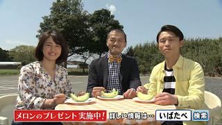 磯山さやかさんと芸人カミナリが地元茨城のメロンを紹介します! 茨城県...