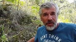 #StopptRückwürfe: Daniel Morgenroth springt ins Wasser.