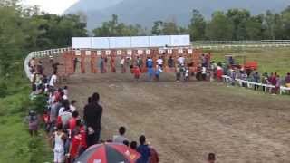 Kuda Stoner. Pacuan Kuda Bank Nagari Sawahlunto Derby