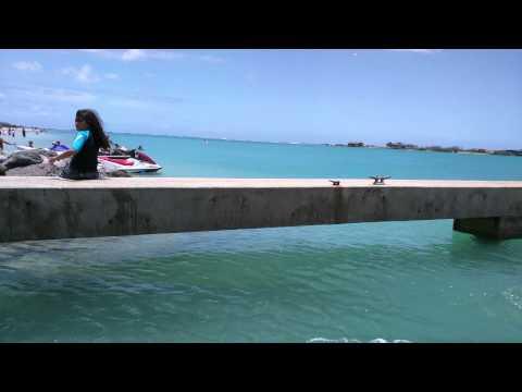 Honolulu Duck Tours - Pearl Harbor/WW2 Aviation