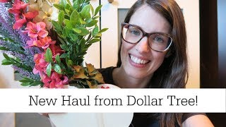 New Dollar Tree Haul | Spring 2019 | New Florals and Succulents!