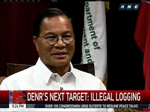 After mining, DENR sets sights on illegal logging