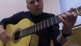 Гитара Фламенко 1