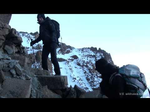 Снега Килиманджаро, Эрнеста Хемингуэйя легендарные фильм и рассказ - фото