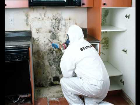 BELFOR Property Restoration disaster rey services