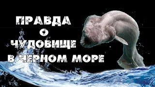 видео Правда о Черном море. От куда сероводород в глубинах Черного моря