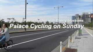 Tokyo Free Cycling on Sunday, around the Imperial Palace