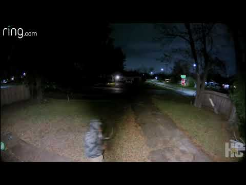 Martha Quinn - Chihuahua Chases Off Attempted Burglar In Texas (VIDEO)