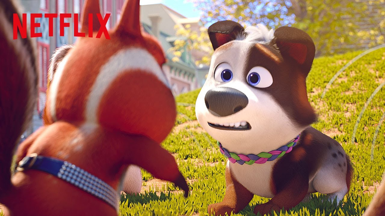 Download Squirrel Scuffle at the Dog Park | Dog Gone Trouble | Netflix Futures