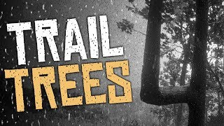 What Are The Trail Trees - Red Dead Redemption 2