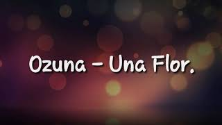OZUNA - Una Flor Letra