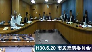 H30.6.20 市民経済委員会