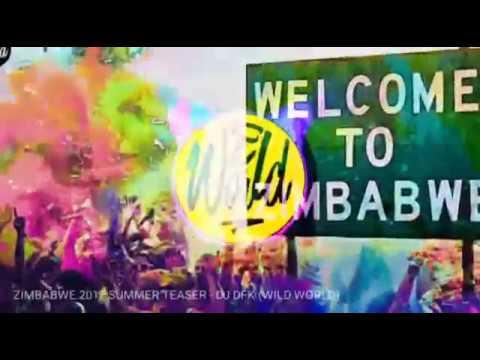 ZIMBABWE 2017 SUMMER TEASER - DJ DFK (WILD WORLD)
