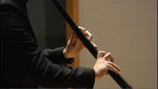 Giovanni Battista Fontana – Sonata Undecima – In Stile Moderno
