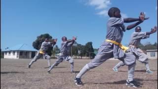 Shaolin Temple Tanzania