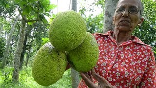 Amazing Sweet Recipe prepared from Breadfruit by Grandma in my Village | Village Food
