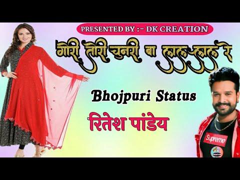 Gori Tori Chunari Ba Lal Lal Re _Ritesh Pandey _ Bhojpuri Whatsapp  Status