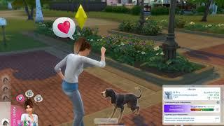 Как приручить бездомных животных в THE SIMS 4
