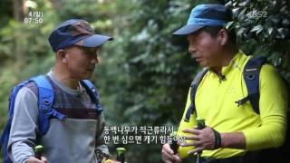 [KBS2영상앨범산] 예술을 꽃피운 산 - 장흥 억불산, 천관산
