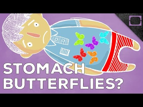 Why Do We Get Butterflies In Our Stomach?