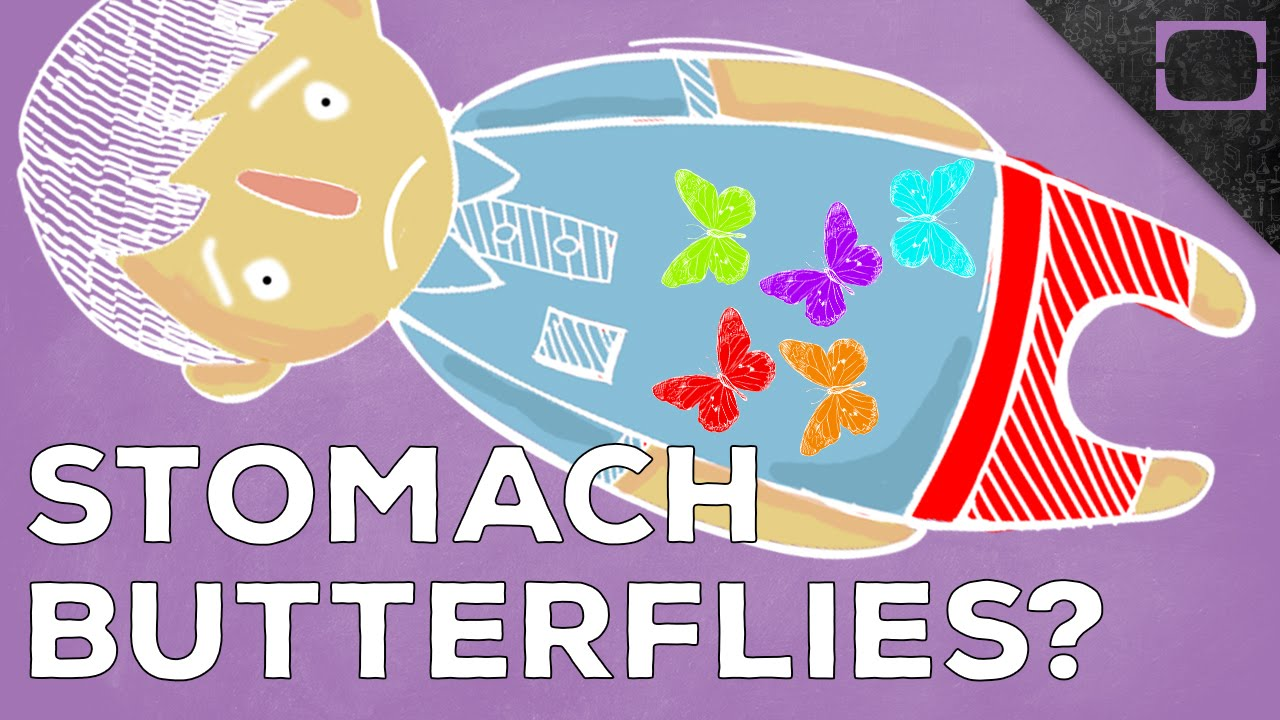 What Causes The Feeling Of Butterflies In Your Stomach