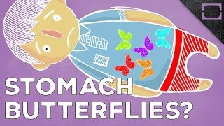 Repeat youtube video Why Do We Get Butterflies In Our Stomach?