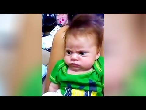 OMG, PRICELESS REACTIONS and FACES of BABIES who get ANNOYED OR DISTURBED - Funniest BABY VIDEOS
